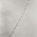 Up from the spring sky, Tenhola Finland 2005 / Palladium print 2011 ©HATSUMI AND SEIJI MIZUNO